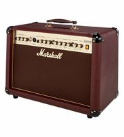 Amplifiers for Acoustic Guitars
