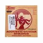 Fisoma F2410 Octave Guitar Strings