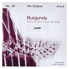 Bow Brand Burgundy 4th A Gut Str. No.26