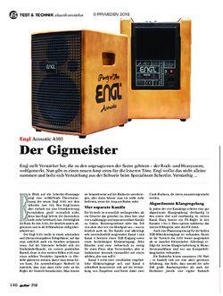 guitar Engl Acoustic A101